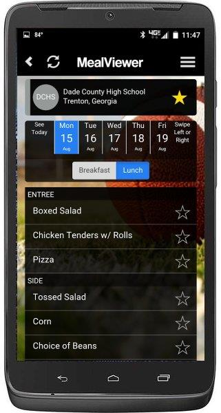 MealViewer To Go App